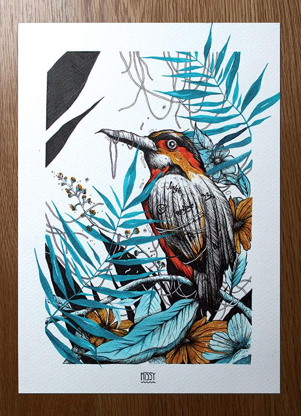 oiseau-exotique-1