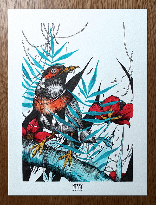 oiseau-exotique-2