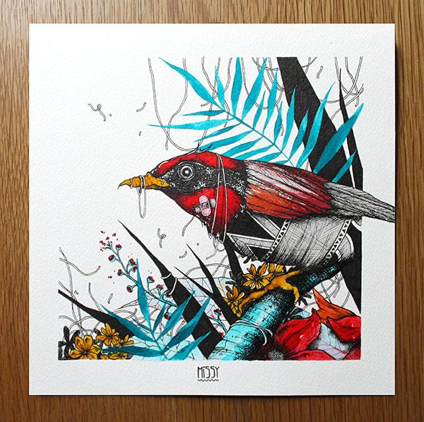 oiseau-exotique-3