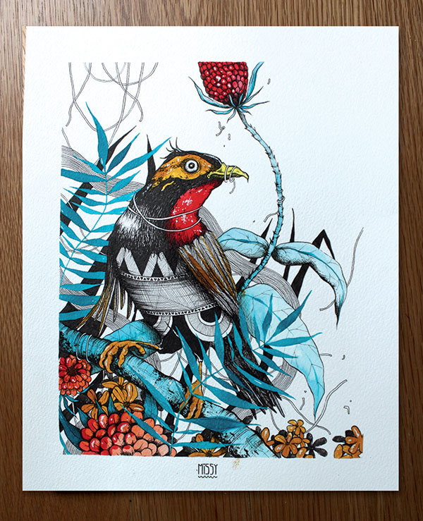 oiseau-exotique-4